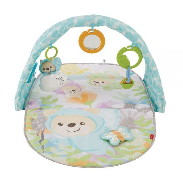 Baby gym Fisher Price Butterfly Dreams